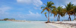 Découverte de la Guadeloupe!