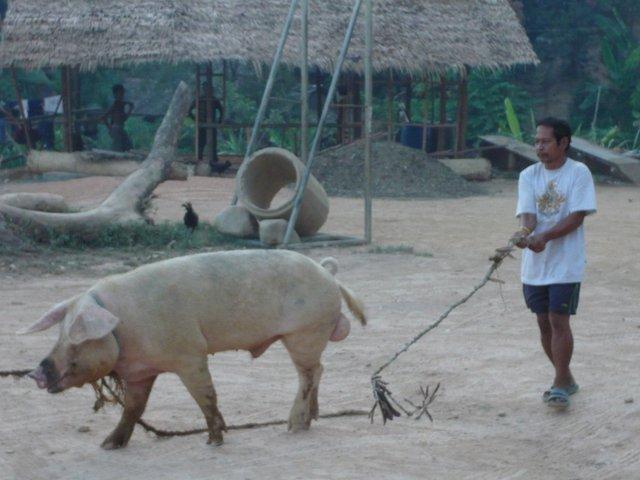 Archipel de Bacuit - El Nido - Palawan - Koh Lanta 8