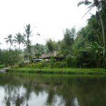 Que faire à Bali?