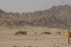Le meilleur de Dahab-Egypte: Blue Hole, Bedouin, plongée…