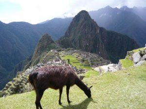 Faut il aller au Machu Picchu?
