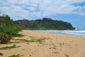 Bocas del Toro, un archipel paradisiaque au Panama!