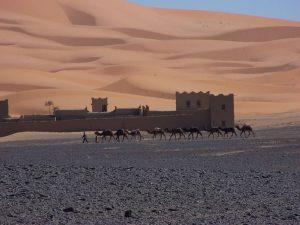 Interview: Le Maroc vu par un Marocain!